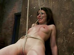 This is hawt and only acquires better, a dominating milf wearing nylons and sexy clothing is showing a younger beauty who's the boss. This babe ties her with rope and as the rope goes through those her slit lips, a weight at the end of the rope makes things more interesting. The chick is suffocated too and probably this babe enjoys it a lot!