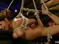 Francesca Le is a hawt milf who's bound and getting vibed and dildo-fucked by Maitresse Madeline. Francesca acquires permission to cum and this honey does. Next the position changes and Maitresse acquires the ding-dong and plunges deep into Francesca's taut asshole, making her moan loudly throughout her ball gag.