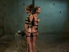Furious Bobbi Starr tortures these horny tarts